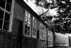 Abandoned lab (a.pierre4840) Tags: olympus om3 zuiko 35mm f2 35mmfilm kosmofotomono100 bw blackandwhite noiretblanc fotor abandoned derelict ruined decay architecture reflections trees dorset england
