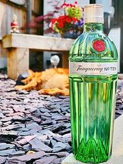 66/365 Tanqueray No Ten... (Gingernutty Photography) Tags: flowers garden gingertabbycat sleepycat gingercat ginbottle summer alcohol tanqueraynotengin tanqueraygin ginandtonic gin