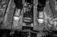 Converse on the bridge. (CWhatPhotos) Tags: cwhatphotos flickr photographs photograph pics pictures pic picture image images foto fotos photography artistic that have which contain near olympus camera micro four thirds sigma 16mm f14 prime lens summers day nature outside waldridge fell durham north east england uk walk about out green sacriston countryside outdoors converse all star stars boot hitops hitop footwear boots chucks bridge wooden wood