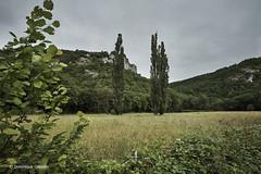 Vallée du Vers (domingo4640) Tags: lot vers valleeduvers eau riviere levers falaise loxia loxia21 loxia2821 paysage paysagebuccolique paysagecampagne departementdulot tourismelot