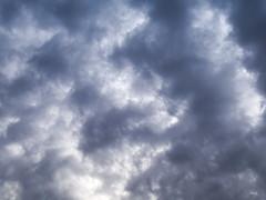 Viene la lluvia... (Andres Bertens) Tags: 8797 olympusem10markii olympusomdem10markii olympusm25mmf18 olympusmzuikodigital25mmf18 rawtherapee