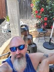 Backyard (cjacobs53) Tags: jacobs jacobsusa clarence cj sun glass sunglasses selfie bald goatee fountain azelia flower backyard back yard tattoo flag