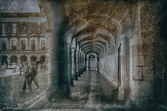 Binnenhof 1 (Pieter Musterd) Tags: binnenhof nik pietermusterd musterd canon pmusterdziggonl nederland holland nl canon5dmarkii canon5d denhaag 'sgravenhage thehague lahaye