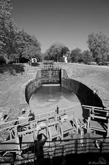 IMGP2211 (Dnl75) Tags: canal canaldumidi france