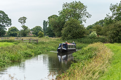 174/365 Halcyon (belincs) Tags: oneaday narrowboat june river lincolnshire 365 2019 uk outdoors 365the2019edition 3652019 day174365 23jun19