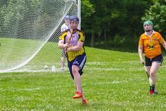 IMG_6633j (indygaa) Tags: indy gaa hurling irish sports indiana indianapolis ireland sliotar guinness