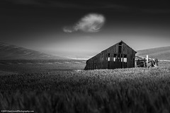 20190609 Id Palouse-0065 (Dan_Girard_Photography) Tags: 2019 clouds dangirardphotography idaho landscape nature washington palouse barn black white bw old thepalouse