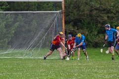 IMG_6376j (indygaa) Tags: indy gaa hurling irish sports indiana indianapolis ireland sliotar guinness