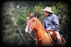 Retrato Campeiro (Eduardo Amorim) Tags: gaúcho gaúchos gaucho gauchos dompedrito pampa campanha fronteira riograndedosul brésil brasil brazil sudamérica südamerika suramérica américadosul southamerica amériquedusud americameridionale américadelsur americadelsud eduardoamorim pilcha pilchagaúcha pilchasgaúchas pilchagaucha pilchasgauchas cavalos caballos horses chevaux cavalli pferde caballo horse cheval cavallo pferd cavalo cavall 馬 حصان 马 лошадь crioulo criollo crioulos criollos cavalocrioulo cavaloscrioulos caballocriollo caballoscriollos