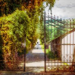 the gate (gotan-da) Tags: texture artwork digital compositing photoart photoshopartistry gate summer texturesquared squareformat