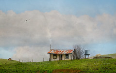 The simple life... (suemartin664) Tags: suemartin bluegranartphotography melbournephotography simplelife rural country