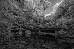 iguana-creek-2659-ps-w (pw-pix) Tags: trees sky cliff plants fall water pool rock clouds creek bush rocks rocky fallen cave bushes australia victoria aboriginal peterwilliams koorie eastgippsland denofnargun mitchellrivernationalpark woolshedcreek nargun pwpix iguanacreek wwwpwpixstudio pwpixstudio halfstonehalfmancreature gunaitribe placeforwomen blackandwhite bw monochrome ir infrared sonya7 850nminfrared irconvertedsonya7 adaptedlens nikkor142428 nikon142428 nikon142428afs nikkor1424mm128ged