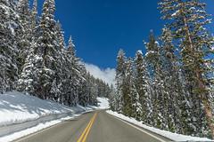 Snowy Dunraven Pass in June (Photomatt28) Tags: travel unitedstatesofamerica yellowstonenationalpark wyoming
