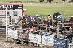 High River Pro Rodeo (tallhuskymike) Tags: highriver rodeo cowboy cowgirl muddy 2018 horse horses western action alberta prorodeo outdoors event guyweadickdays