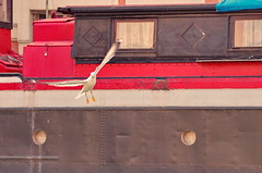 336 - Paris Avril 2019 - au-dessus du canal de l'Ourcq (paspog) Tags: paris france canal avril april 2019 canaldelourcq ourcq