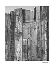 Hodgepodge (agianelo) Tags: wood fence monochrome bw bn blackandwhite abstract texture