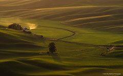 Sensual Sunlight (carolina_sky) Tags: palouse farmland washington state steptoebutte rolling hills grass summer hazy farmhouse smoke light sunset green skymatthewsphotography pentaxk1 pentax150450mm