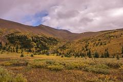 Opal Hills 4 (www78) Tags: canada jasper maligne nationalpark lake opal hills national park alberta