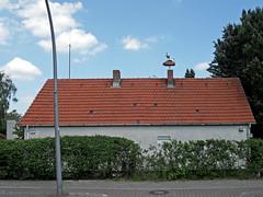 Trautes Heim (onnola) Tags: berlin deutschland germany gwb guesswhereberlin haus house dach roof storch nest stork hecke hedge neukölln buckow