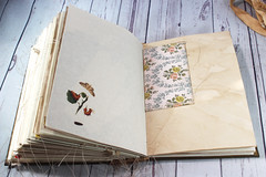 IMG_2613 (thejournalsquirrel) Tags: junkjournal journal thejournalsquirrel books bookbinder mixedmedia bookart paper art journaling artjournaling bibliophile ilovebooks commonplacebooks