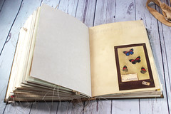 IMG_2607 (thejournalsquirrel) Tags: junkjournal journal thejournalsquirrel books bookbinder mixedmedia bookart paper art journaling artjournaling bibliophile ilovebooks commonplacebooks