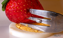 Styling Food on a Fork. (Digifred.nl) Tags: macro netherlands closeup strawberry egg nederland fork hmm makingof ei macrophotography vork aardbei 2019 macromondays digifred pentaxk5 stylingfoodonafork
