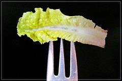 when you are on a diet... ;) (green_lover (your COMMENTS are welcome!)) Tags: fork leaf lettuce macro macromondays stylingfoodonafork green metal blackbackground frame