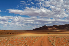 Open Spaces (pdxsafariguy) Tags: landscape nature desert namibia sky africa dry sand namib namibrand scenic grass reserve valley red track mountains tree orange road clouds arid shadows tomschwabel
