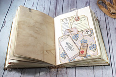 IMG_2590 (thejournalsquirrel) Tags: junkjournal journal thejournalsquirrel books bookbinder mixedmedia bookart paper art journaling artjournaling bibliophile ilovebooks commonplacebooks