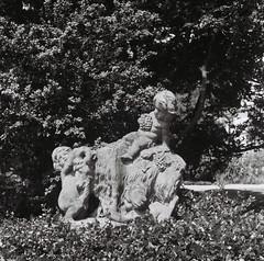 Bacchus und Gesellen ... (alf sigaro) Tags: rolleiflex4x4babyrolleiflex rolleiflex4x4 babyrolleiflex rollei rolleiflex 4x4 frankeheidecke 127 hermannshof weinheim badenwürttemberg efker100 sw bw bacchus skulptur