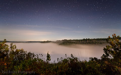 Full to the Brim (Panorama Paul) Tags: paulbruinsphotography wwwpaulbruinscoza southafrica southerncape gardenroute knysnaforest indigenousforests gouna mist stars nikond850 nikkorlenses nikfilters