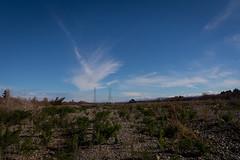 Riverbed, pylons and sky (johnstewartnz) Tags: canon eos 100canon canonapsc apsc 7dmarkii 7d2 7d canon7dmarkii canoneos7dmkii canoneos7dmarkii 1740mm 1740 ef1740mmf4lusm landscape pylons powerpylons humminggiants cloud clouds