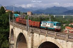 FS D445.1020 - Cuneo (Federico Santagati) Tags: d445 445 1020 fs mercitalia trenitalia cuneo viadotto marcello soleri ponte nuovo verzuolandia verzuolame log train bahn alpen alps alpi cozie marittime seealpen zug freight merci diesel locomotive locomotiva