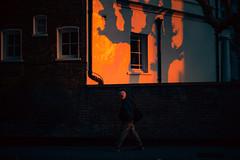 24,911 (Panda1339) Tags: thegreat50mmproject 50mm london cinematic streetphotography southkensington ldn uk light