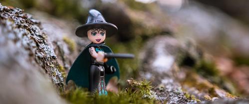 Bellatrix Elfstrange