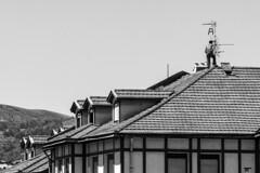 Langilea. (AnderTXargazkiak) Tags: langilea solokoetxe bilbo bizkaia euskalherria basquecountry baskenland zuriaetabeltza blackandwhite blancoynegro monocromático ander andertxrekordseh andertxargazkiak txrekordseh workingclass claseobrera