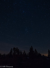 Starlight on the Sods (KRHphotos) Tags: stars trees westvirginia nightphotography landscape dollysods monongahelanationalforest nature