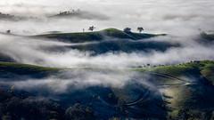 Living in the clouds (RissaJT_23) Tags: fog clouds hills landscape australianlandscape australiancountry australia victoria canon canon5dmarkiv