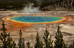 Grand Prismatic Overlook - Yellowstone National Park (John Clay173) Tags: june yellowstonenationalpark jclay wyoming