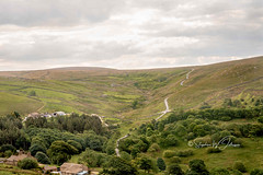 SJ1_8689 -Thursden Valley (SWJuk) Tags: swjuk uk unitedkingdom gb britain england lancashire burnley home thursdenvalley valley hillside hills trees moorland moors grass fields farmland farm farmtrack road winding clouds cloudy countryside landscape scenery view 2019 jun2019 summer nikon d7200 nikond7200 nikkor1755mmf28 rawnef lightroomclassiccc