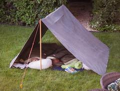 Day 585 | Backyard Camping (JL2.8) Tags: boise idaho unitedstatesofamerica kids camping tent sleeping children childhood faily family love canon 6dmk2 project365 day585 365 photochallenge