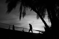 (Claudio Blanc) Tags: buenosaires bw bn blackandwhite blancoynegro argentina street streetphotography silhouette silhoutte contraluz fotografíacallejera fotografiaurbana