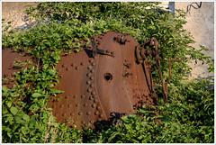 rusty (gin_able) Tags: railway abandoned eisenbahn lok waggon old colorful