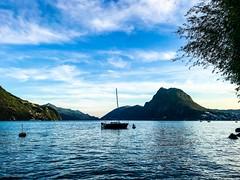 #lugano #luganomycity #lakelugano #Lugano #swiss #switzerland #summer #akita #akitainu (lally_coupeau) Tags: lugano luganomycity lakelugano swiss switzerland summer akita akitainu