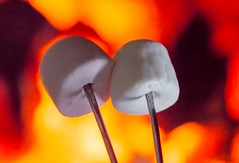 Toasting Marshmallows on a Fork. (Different Aspects) Tags: macromondays stylingfoodonafork fork marshmallow toasted toastingfork