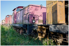 pastell (gin_able) Tags: railway abandoned eisenbahn lok waggon old colorful