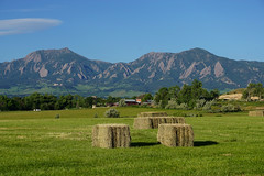 Marvelous Morning (Let Ideas Compete) Tags: flatirons farm hay boulderflatirons field sky morning boulderco bouldercolorado jayroad landscape haybales cowfood haybale farmland lenticularcloud beautifulday beautifulmorning outside planetearth sliceofparadise mountains greengrass marvelousmorning ridgeline clearday bouldercounty greenblueandbrown