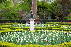 Dutch garden (angelsgermain) Tags: garden park green plants flowers trees bushes hedges leaves sculpture statue tulips spring colours formalgarden dutchgarden hollandpark london england unitedkingdom uk
