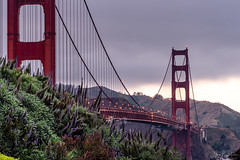 Golden hour by the Golden gate (Batulina) Tags: sanfranciso goldengate godengatebridge goldenhour sonya6500 zeissbatis85mm