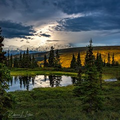 A Stormy Denali Sunrise [Explored June 2019 - Thank You!] (rebeccalatsonphotography) Tags: denalinationalpark denali nationalpark rebeccalatsonphotography alaska storm stormy clouds mountain light sunlight morning sunrise pond water reflection canon boat campdenali nuggetpond